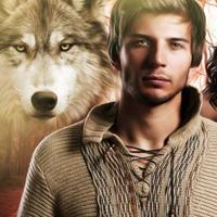 Werewolf shifter romance