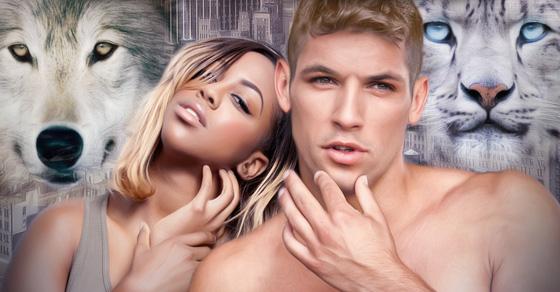 That Shifter Love - A Werecat Loves Werewolf Paranormal Romance Story